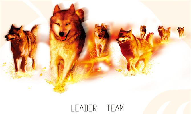 火狼是一种精神.jpg
