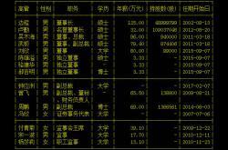 科达洁能副总裁周鹏辞职了!之前钟应洲升了副总裁
