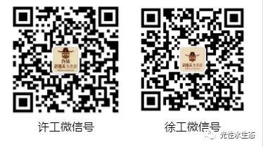 微信图片_20190804231340_看图王.jpg
