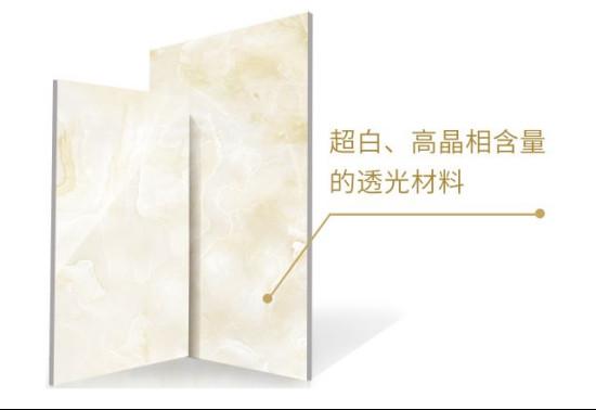 NEWS |欧神诺受邀出席亚洲陶瓷材料研讨会作专题报告610.jpg
