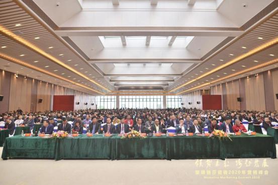 领势·跨越:聚焦蒙娜丽莎瓷砖2020营销峰会180.jpg