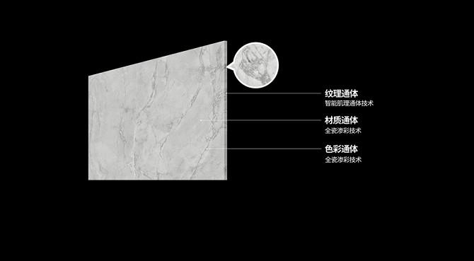 """行业迎来""""真""""通体革命!诺贝尔发布全球首款""""全通体""""瓷抛砖"""