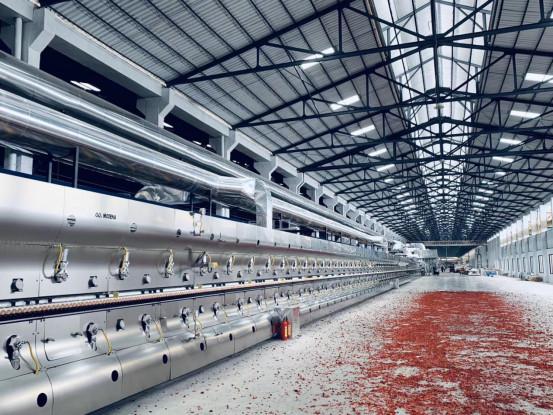 518 摩德娜承建的金牌企业二期岩板生产线隆重点火(2)(1)2958.jpg