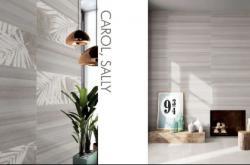 连纹岩板、大板、瓷质墙砖......超多潮流新品,马上揭秘!