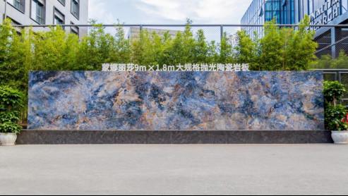 蒙娜丽莎  广东知名品牌1132.jpg